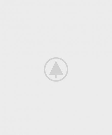 ағаш-портфель - толтырғыш